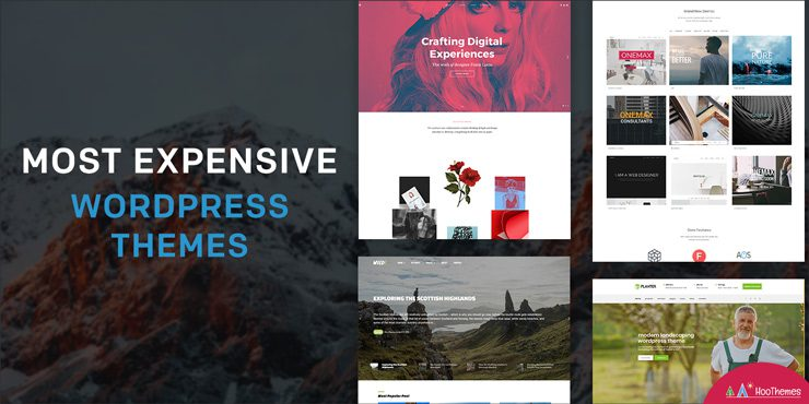 Expensive WordPress Themes