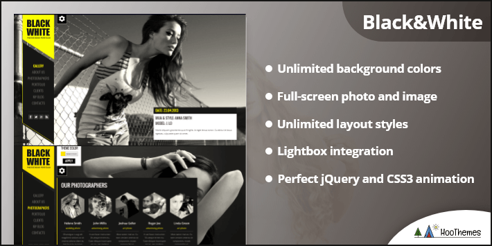 Black White Responsive Portfolio WordPress Themes