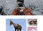 Shutter Up Free WP Themes for Photographers