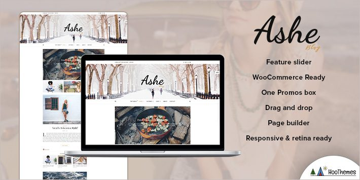 Ashe WordPress Themes for Beginners
