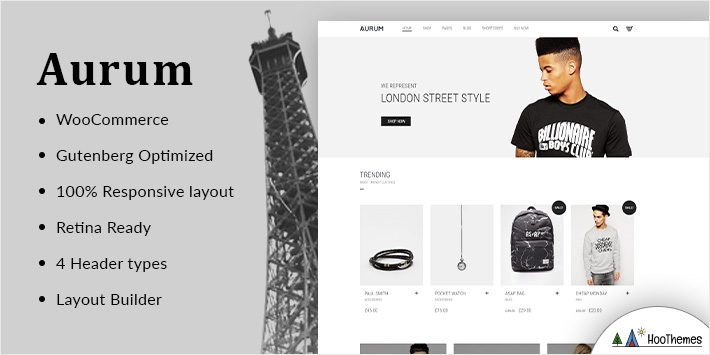 Aurum Minimalist WordPress Themes