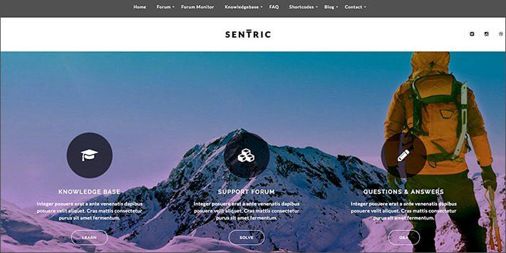 Sentric WordPress Forum Plugin